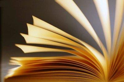 Livros (1)